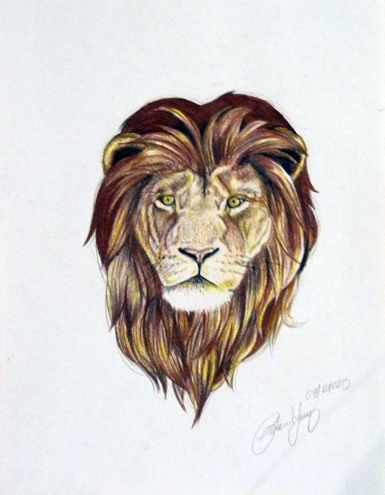 Lion - taavoart