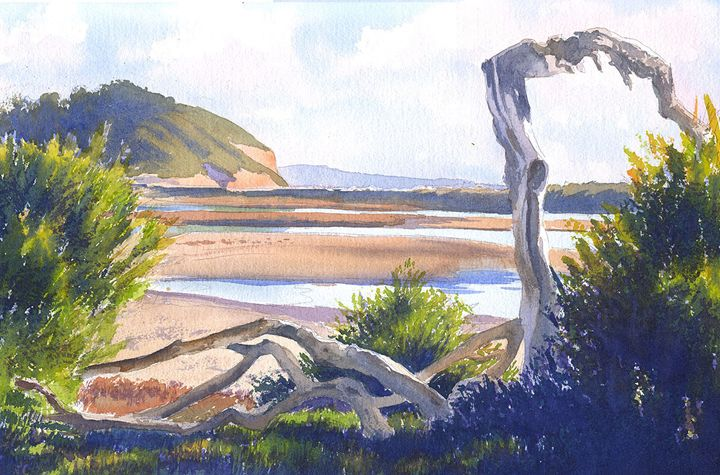 Driftwood at Torrey Pines - Mary Helmreich California Watercolors