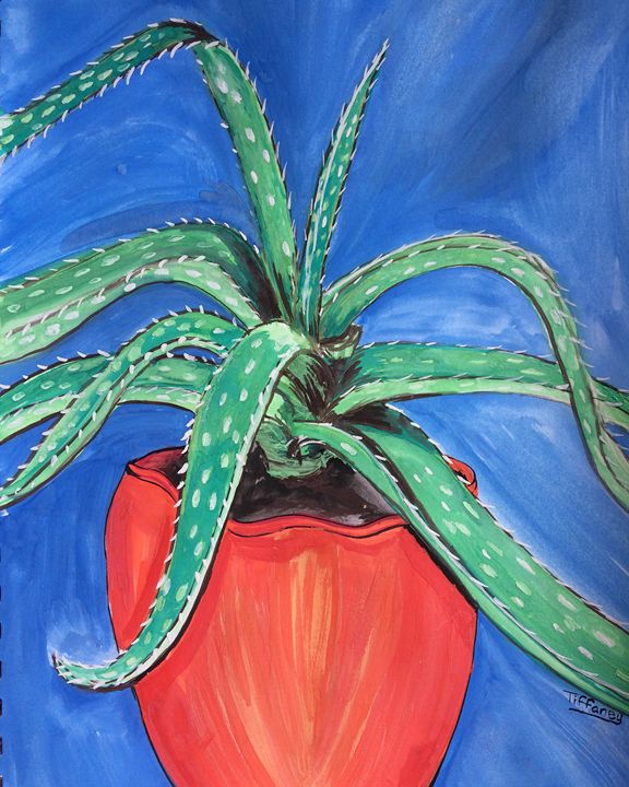 Aloe - Tiffaney Pelaez