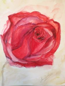 A Rose Beginning - Welcome to Bentivegna Art
