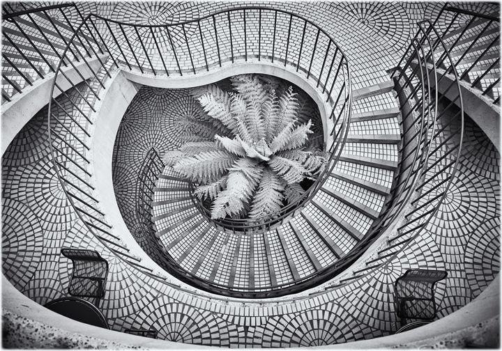Spiral stairs with fern - Edward Maesen