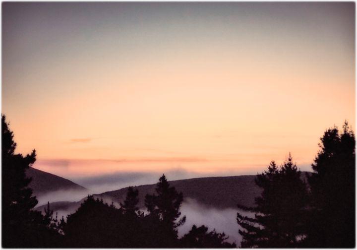 View from Mt Tamalpais towards ocean - Edward Maesen