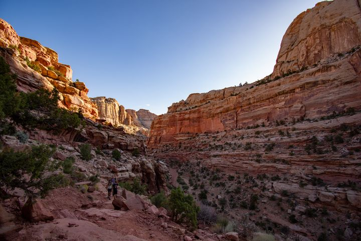 Capitol Reef - James Gifford