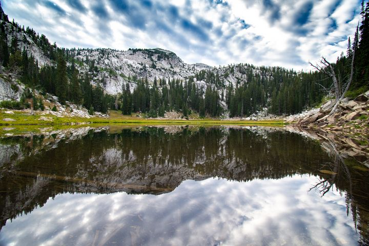 Upper Bells Reservoir Reflection - James Gifford