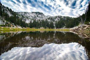 Upper Bells Reservoir Reflection