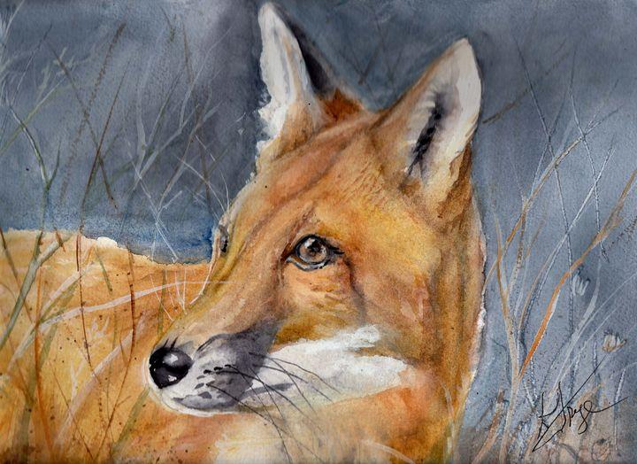 Hunter - Wildwood  Watercolors