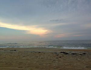 Sandy Morning