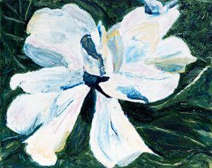 Gardenia - Kelly Karim