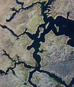 The river plains
