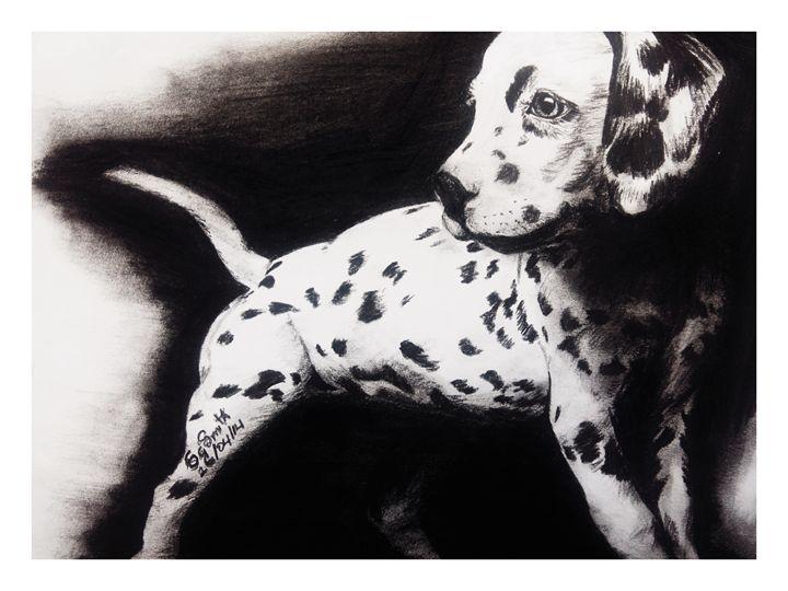 dalmation pup - sparkle smith
