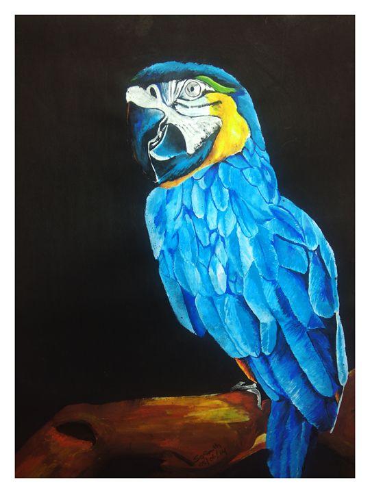 blue parrot - sparkle smith