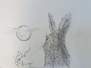 Hare Prays by Moonlight