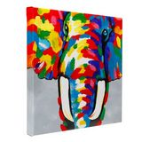 Colourful elephant hand painted oil