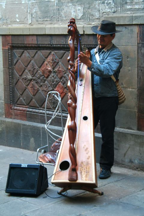 Street Harpist in Barcelona - Tony Walling Creative Arts