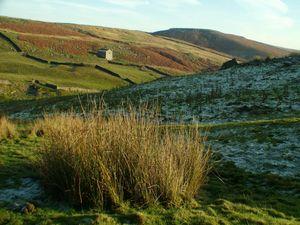 Valley near Grassington, Yorkshire