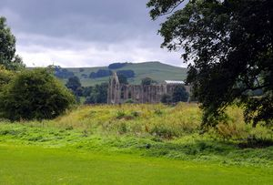 Bolton Abbey through trees