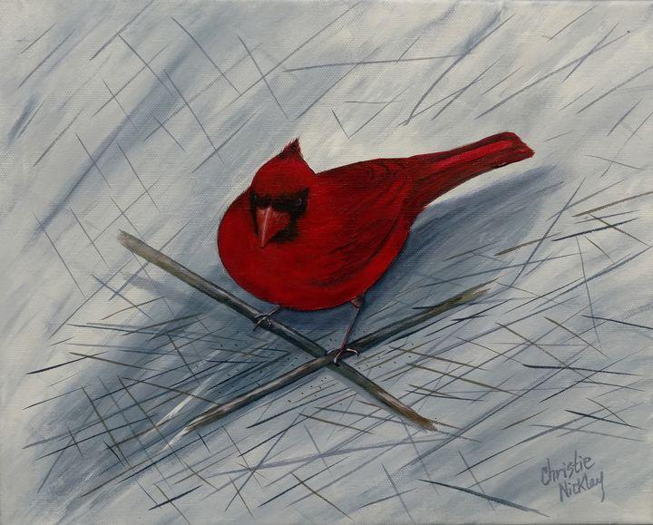 Misplaced Cardinal - Christie Nicklay Art