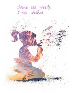 Some see weeds,I see wishes....