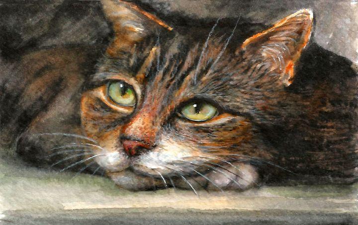 Cat - NatalyArt