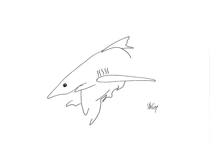 Shark - simply angela