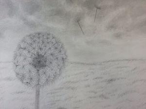 Lonely dandelion