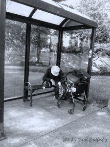 Elderly Homeless in America