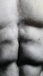 Bodyscapes Male Torso