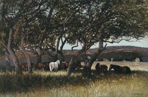Horses Under Trees | Texas Art Print