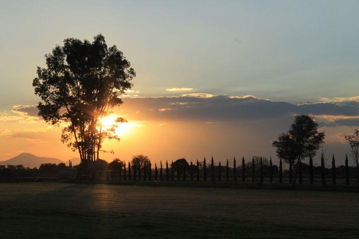 Campo mexicano - Lemo