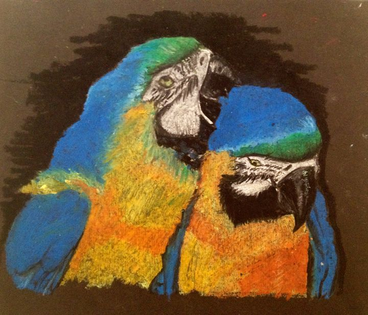 Parrot Love - Elise Pearce