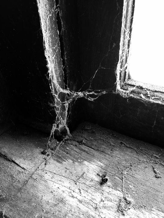 Cobwebs - Matthew Gordon