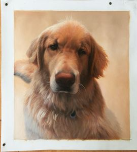 Pet Oil Portrait Painting