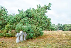three stone crosses in the old cemet - Radomir