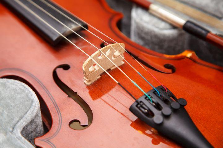 violin lying in a case closeup - Radomir