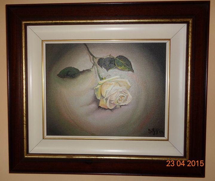 White Rose - Sofija