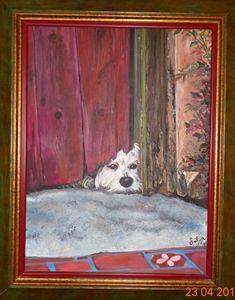 Peeping Dog - Sofija