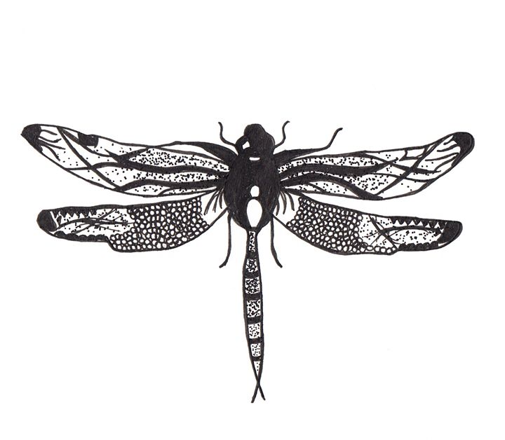 Dragonfly - Alicia oldfield