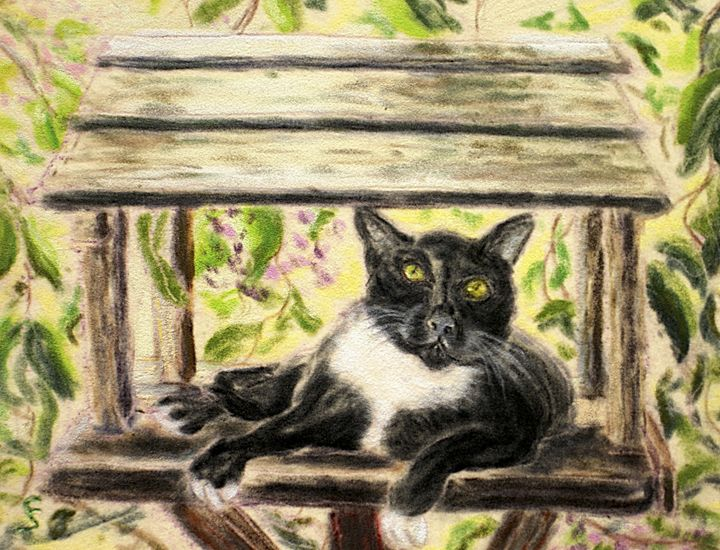 Cat in the Birdhouse - Cynthia Sjoberg