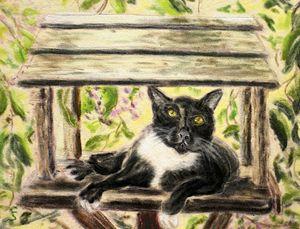 Cat in the Birdhouse