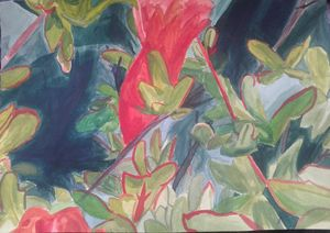 Beautiful red flowers (nature study)