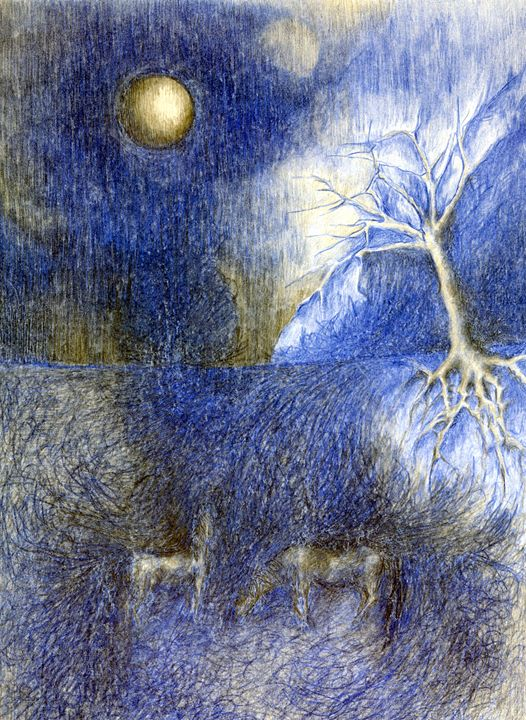 In Night In The Meadow - Wojtek Kowalski