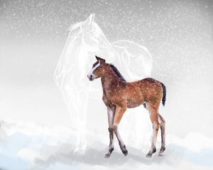 Ghost horse with foal