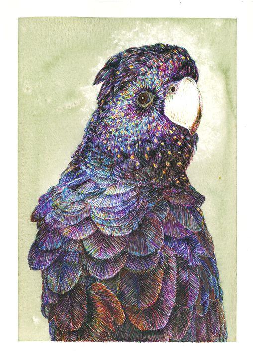 Birdy - Boris Kuzenko