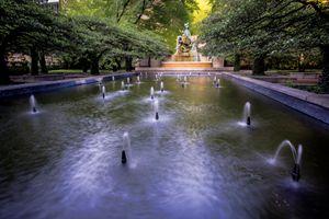 Chicago's Art Institute garden - Sven Brogren Photography