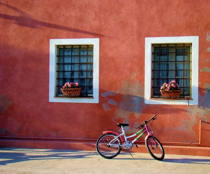 Lucca Bicycle - Roxanne Morris