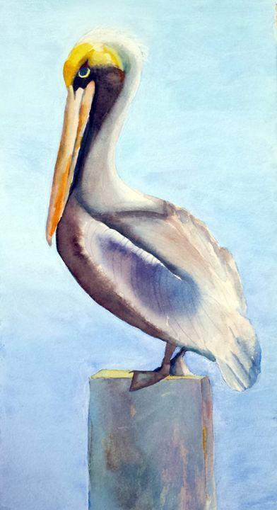 Pelican with attitude - Roxanne Morris