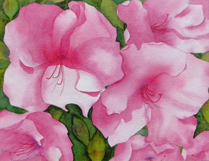 Fiori Rosa - Roxanne Morris