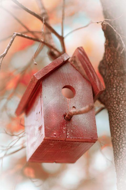 Broken Home - Kristin Woodward