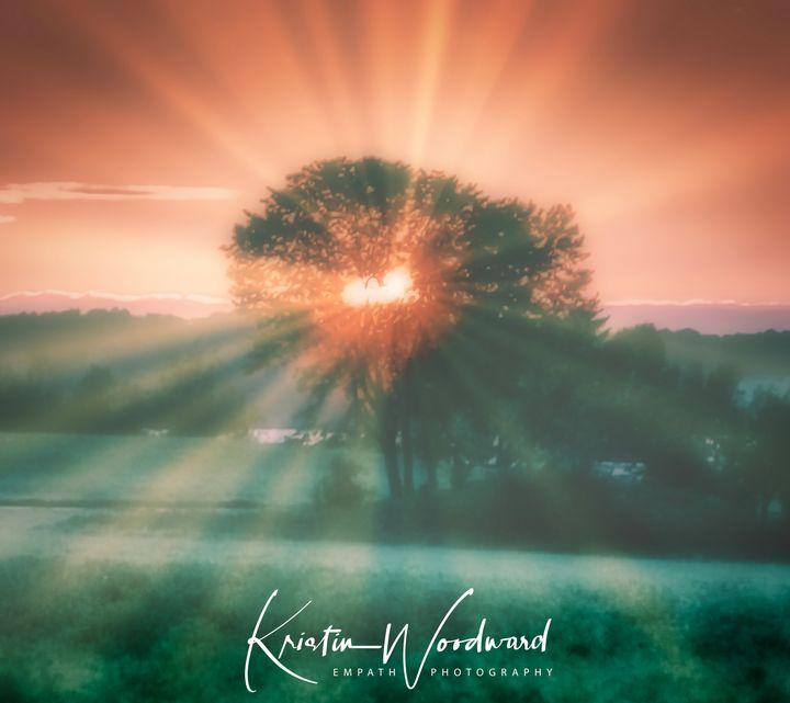 Heart Shape Rays - Kristin Woodward