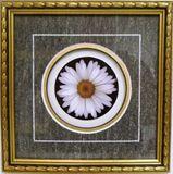 White Flower Print on Paper